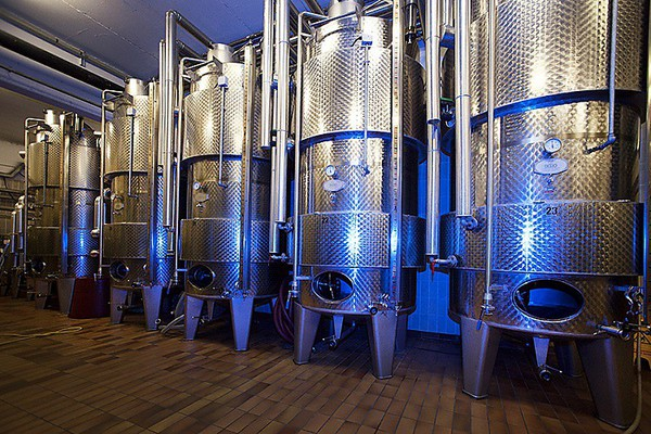 Cave du Vin Blanc