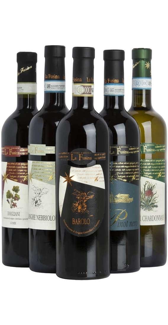 Selezione 6 Vini Piemontesi