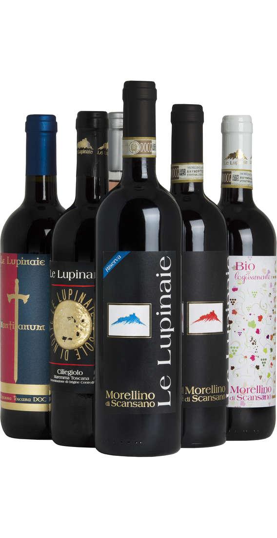Selezione 6 Vini Toscani